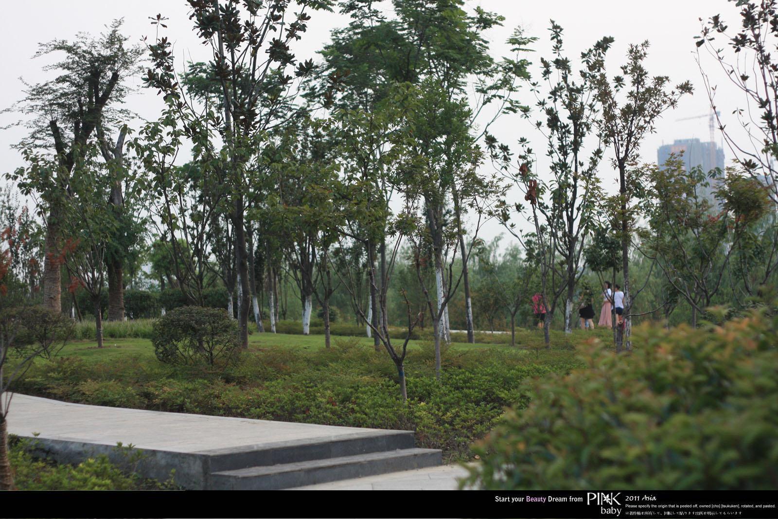 南阳襄阳盆地